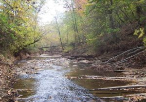rivermont picture 2 stream